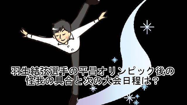 羽生結弦選手の平昌オリンピック...